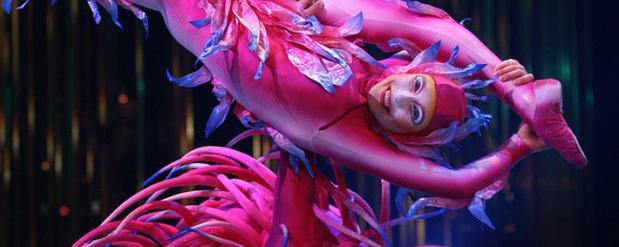 Брендом «Цирка дю Солей» омичей заманивают на шоу другого цирка